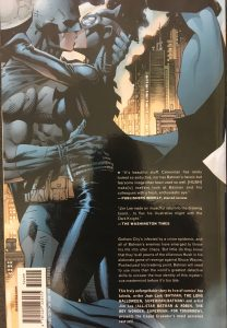Batman Hush Rear