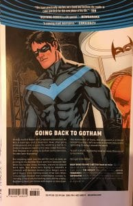 Nightwing Better than Batman Rear